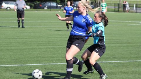 Reynolds top the table heading into Ryan Cup city playoffs