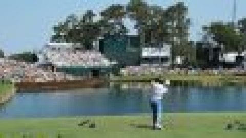 Rookies guide to Sawgrass