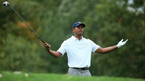 Brandel Chamblee backspins roar over Tiger Woods