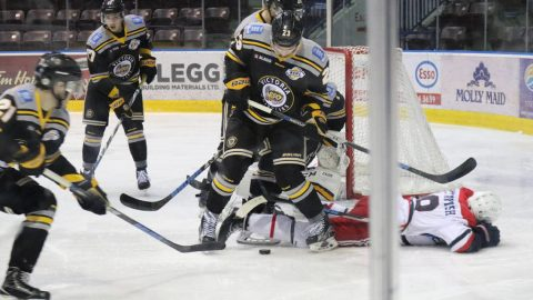 Victoria Grizzlies's first post season games this Friday and Saturday in Q Centre