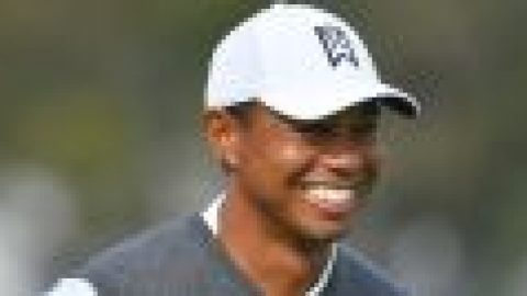 Woods names Presidents Cup VCs