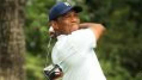 McGinley: Tiger in good shape