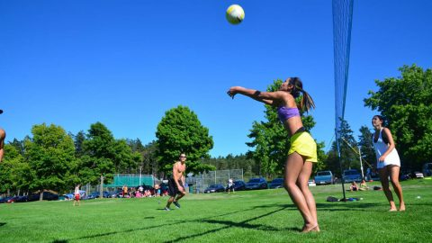 Volleyball league serving up on West Shore