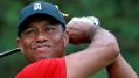 Tiger pleased with fast finish