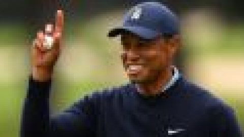 Tiger back to 'full speed'