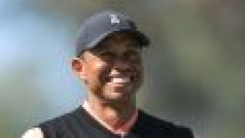 Woods voted into Hall of Fame