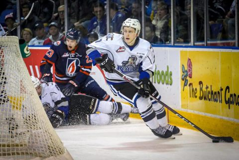 Fans expected in the Save-On stands for Victoria Royals' Oct. 2 home opener